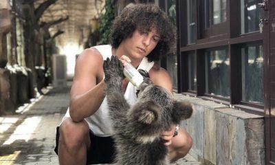David Luiz alimentou um urso bebé
