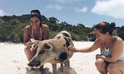 A filha e a esposa de José Mourinho com um porco nadador das Bahamas
